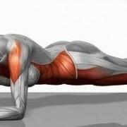 plank-miesnie