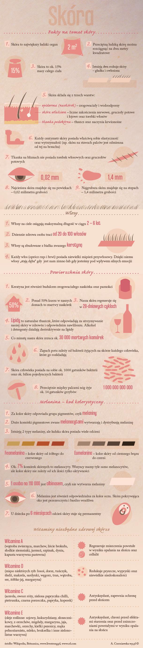 skora_infografika_610