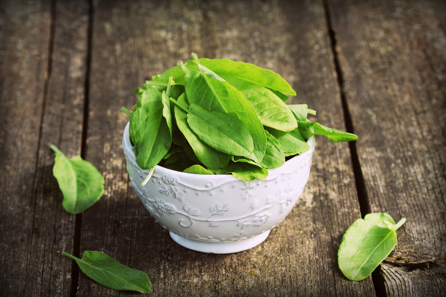 fresh organic sorrel leaves in bowl on wooden table