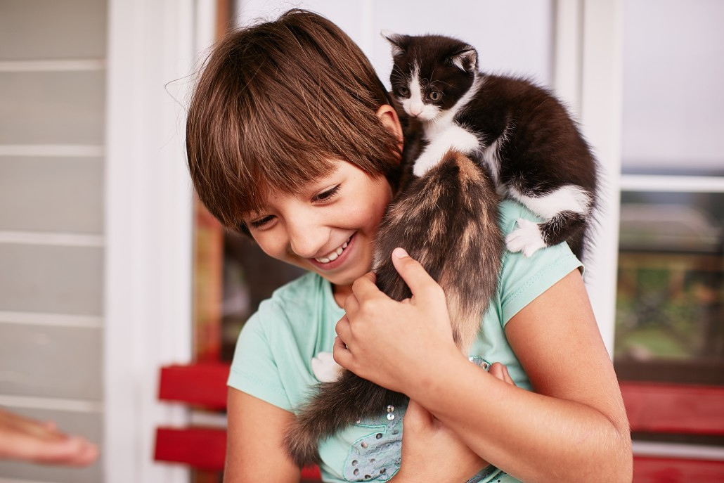 Charming little boy holds two kitties in his arms