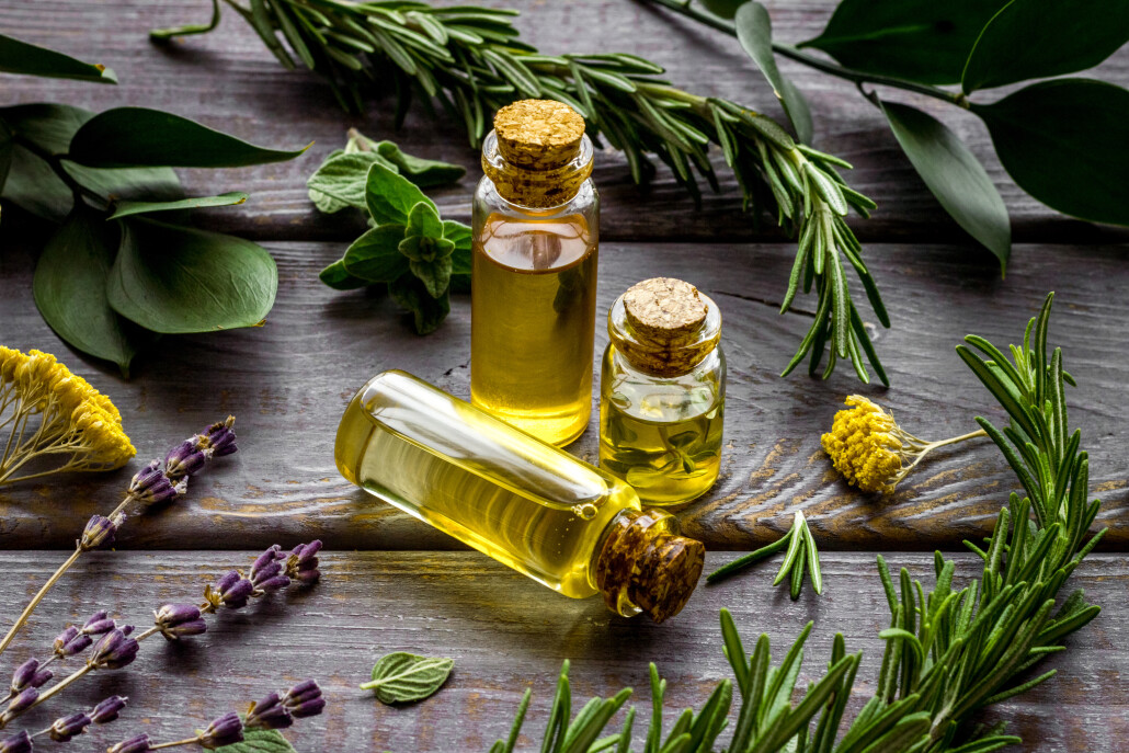 Aromatherapy. Essential oils in small bottles near fresh herbs on dark wooden background